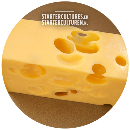 Big hole cheese proprion acid startercultures.eu