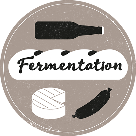 Fermentation workshops